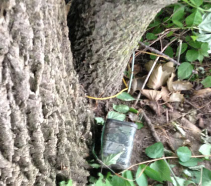 Getting Started With Geocaching